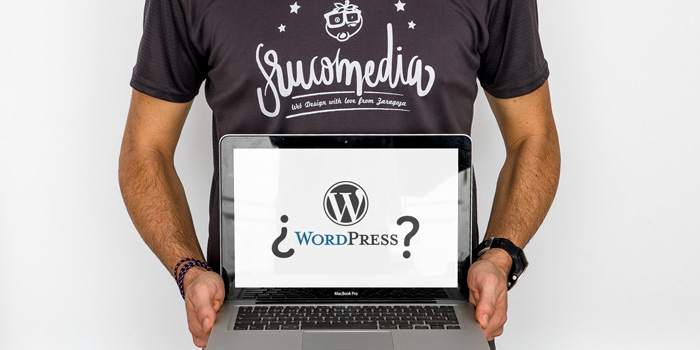 Is WordPress the best option for starting a website?